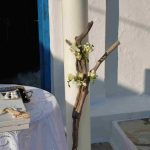 14KITHNOS WEDDING DECORATION